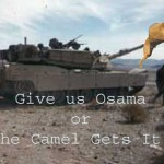 The camel gets it
