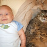 This cat obviously eats babies.