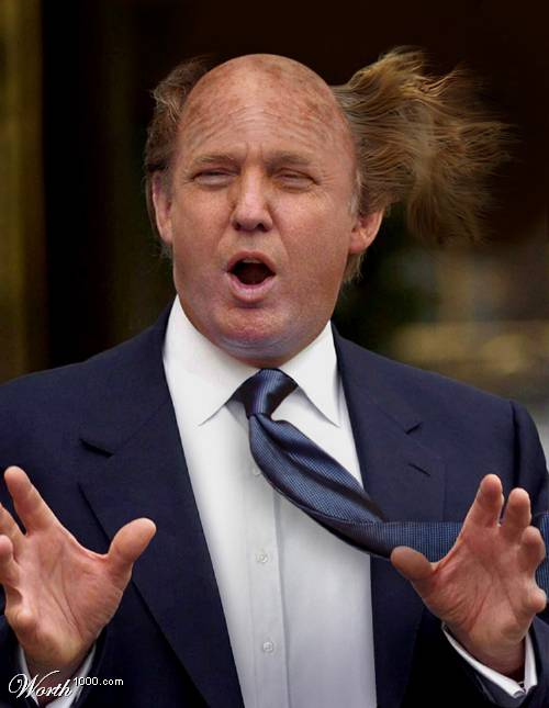 Tubegator - Funny pictures of Donald Trump and his Hair